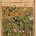 Conference of the birds (from 'Attar, Mantiq al-Tayr, 1493)