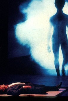 An Imaginary Life (film projection)