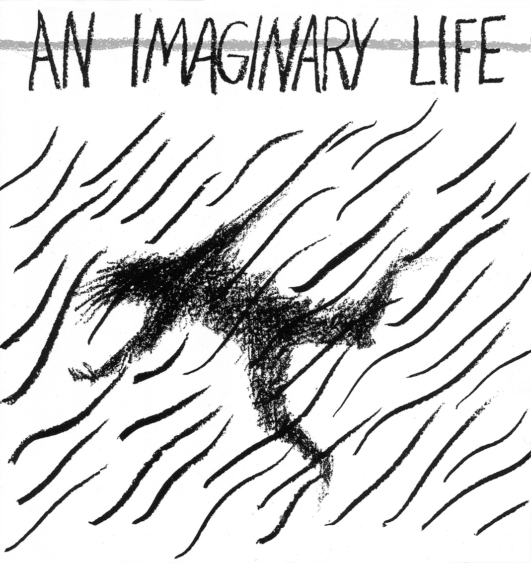 An Imaginary Life (poster drawing by Kim Carpenter)